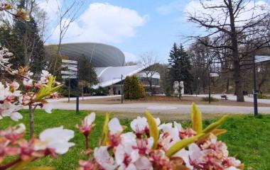 Na zdjęciu znajduje się nowy Amfiteatr w Koszalinie